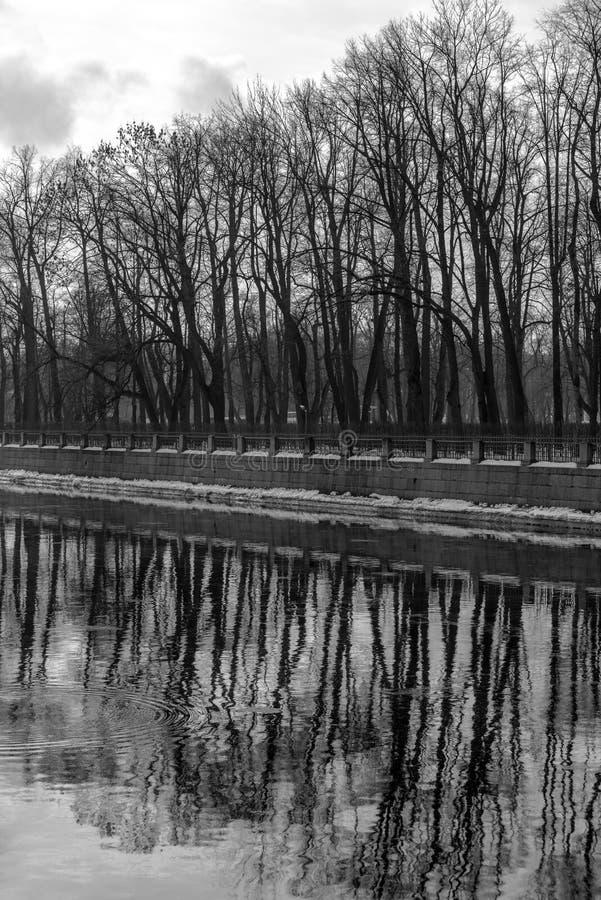 Trees on the embankment