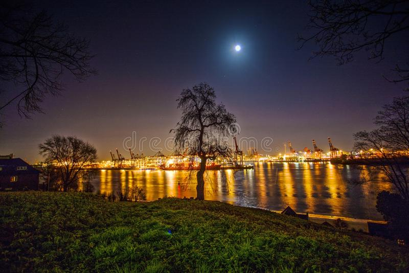Reflection of Trees in Water at Night royalty free stock images