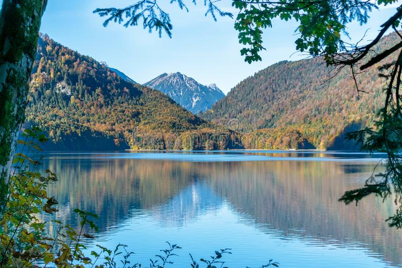 Reflection view in a lake with autumn forest and mountains in the Alps in the morning royalty free stock photography