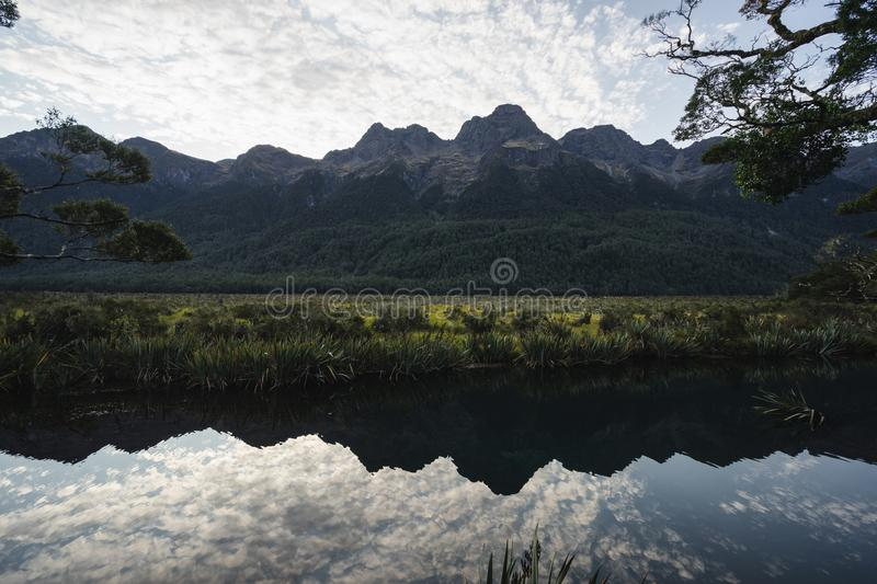 Mirror lake reflection in Milford sound stock image