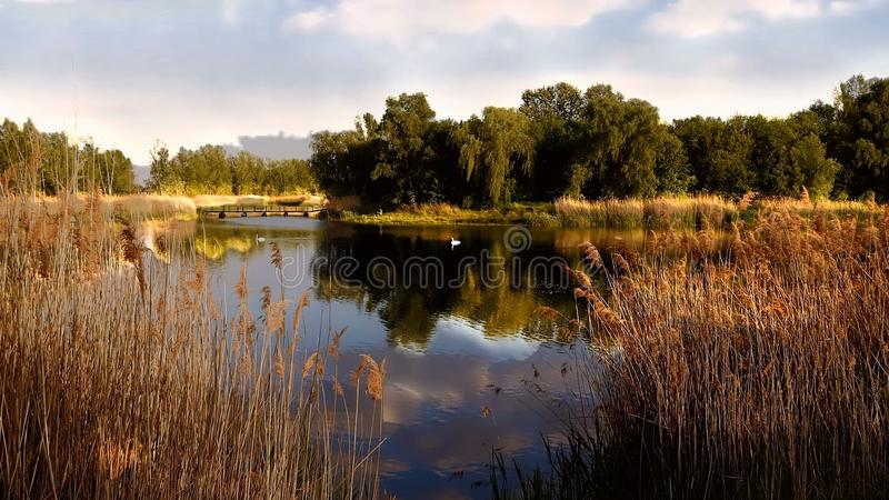 Reflection, Water, Nature, Nature Reserve royalty free stock photography