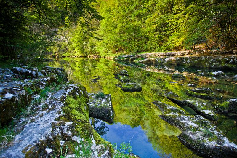 Download Reflections stock image. Image of reflections, fresh - 19273445