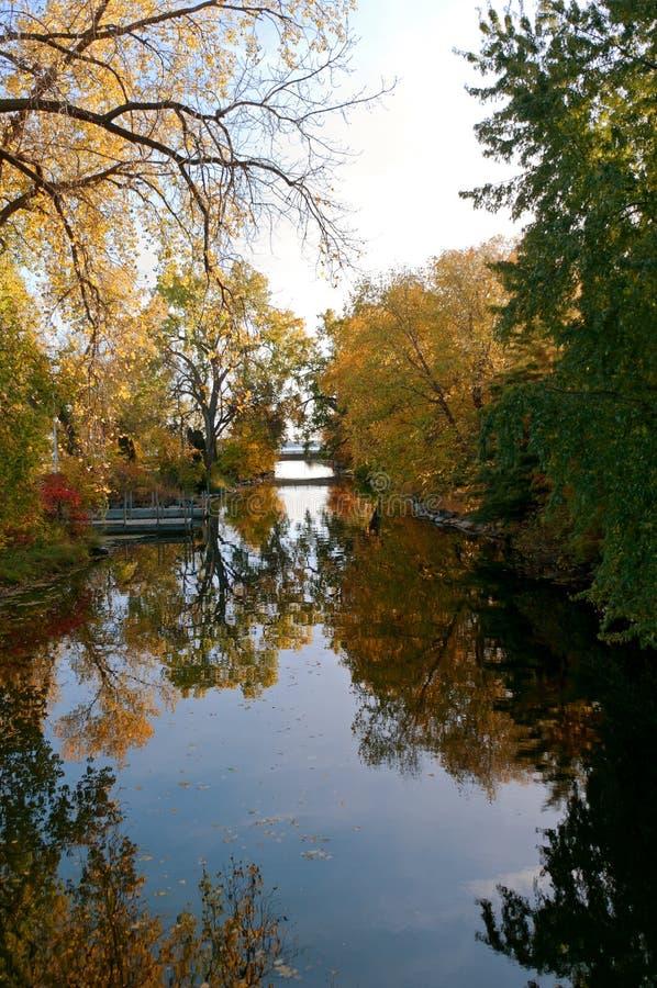 Reflections of Autumn at Botanical Garden royalty free stock photo