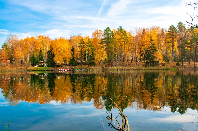 Reflections of Autumn. October and November background. Reflections of Autumn. Beautiful Autumn landscape with lake and calm water, forest with yellow, orange stock photos
