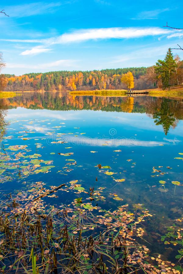 Reflections of Autumn. October and November background. Reflections of Autumn. Beautiful Autumn landscape with lake and calm water, forest with yellow, orange royalty free stock image