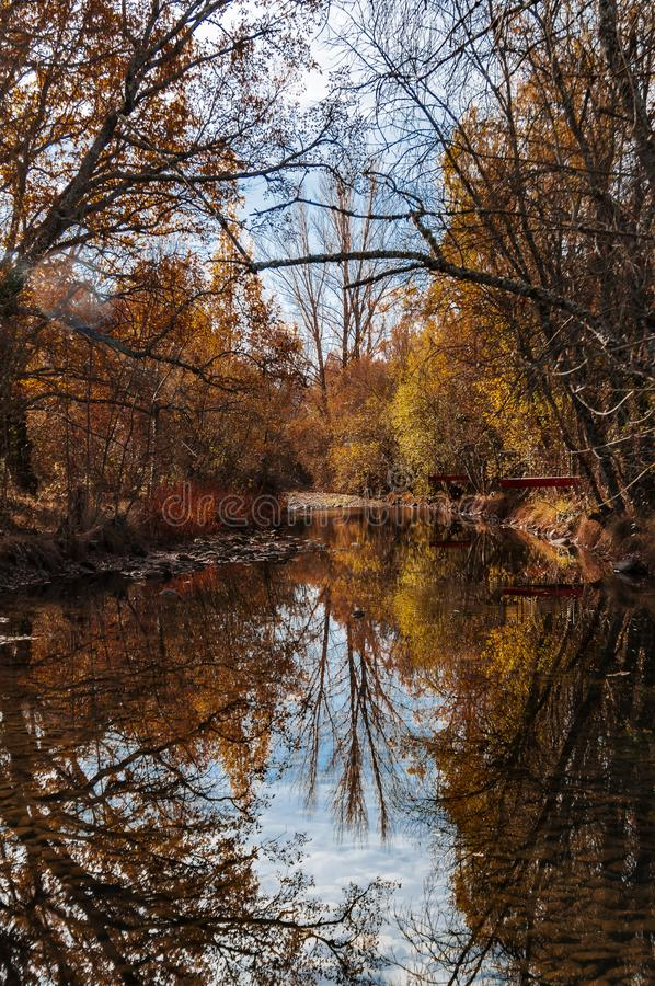 Reflections of autumn in a river asleep. royalty free stock images