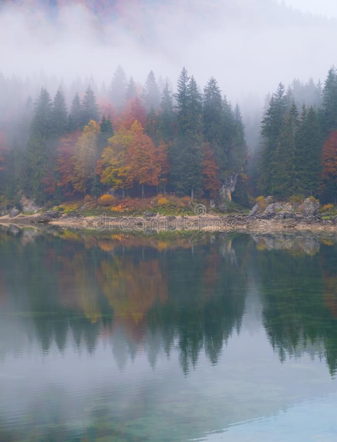 Reflections of foggy forest on lake Laghi Fusine in autumn royalty free stock image