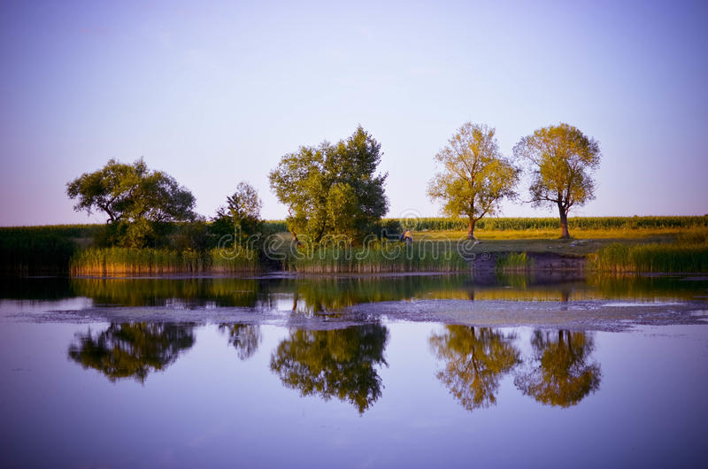Reflections of green trees, blue sky and clouds in the calm water lake stock images