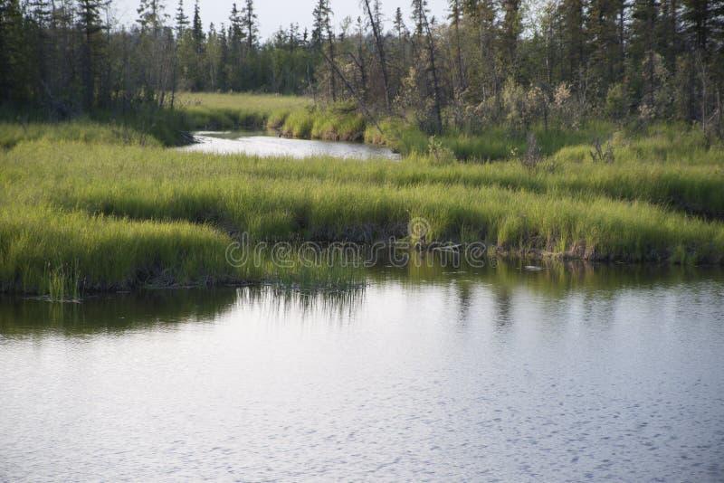 Download Reflections Lake Palmer Alaska Stock Image - Image of state, alaska: 56619015