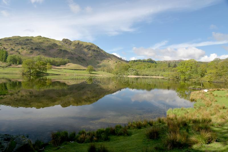 Reflections of Loughrigg Fell in Rydalwater, Lake District. Reflections of Loughrigg Fell seen in the waters ofRydalwater in the English Lake District royalty free stock photo