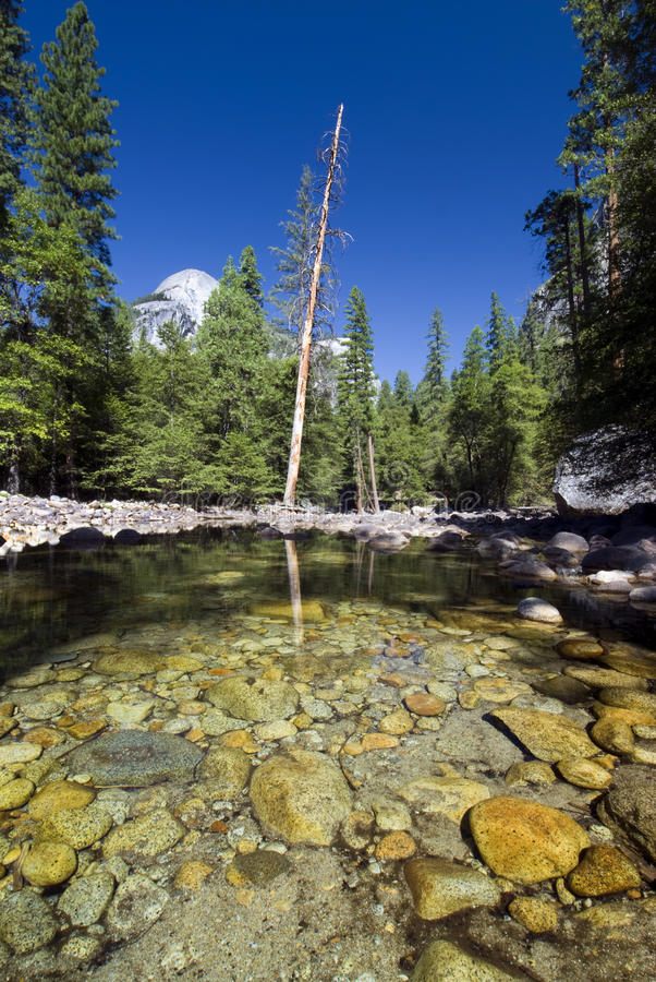 Download Reflections In Merced River, Yosemite National Park,California, USA Stock Image - Image: 38209917