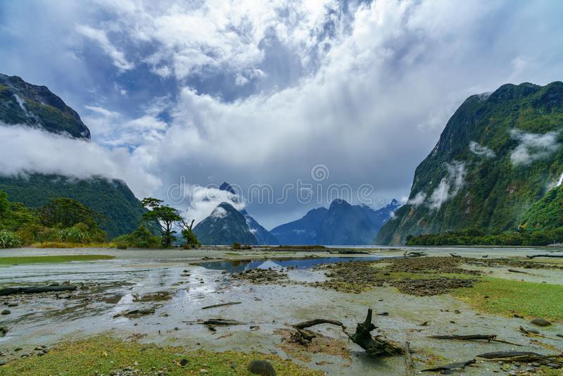 Reflections of mountains in the water, milford sound, new zealand 3 stock photos