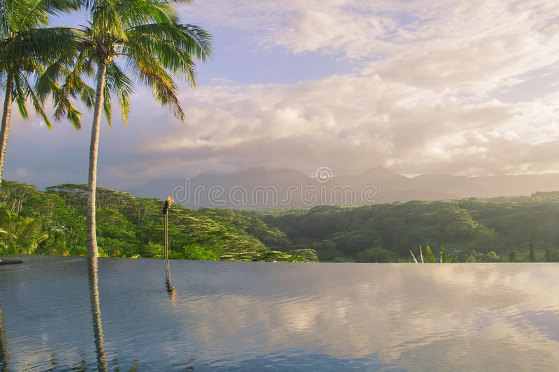 Reflections of palm trees in the pool. royalty free stock image