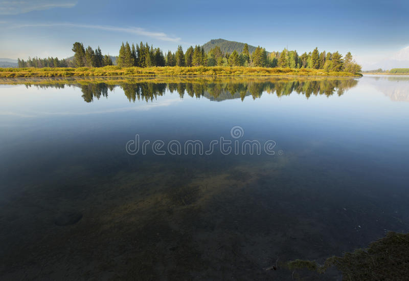 Reflections of pine forest on mirror surface of Snake River, Wyo stock photo