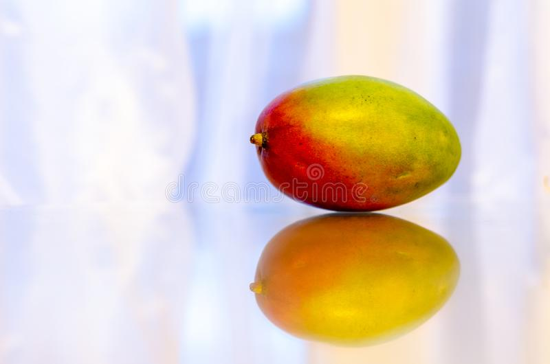 Reflections of a ripe mango fruit royalty free stock photography