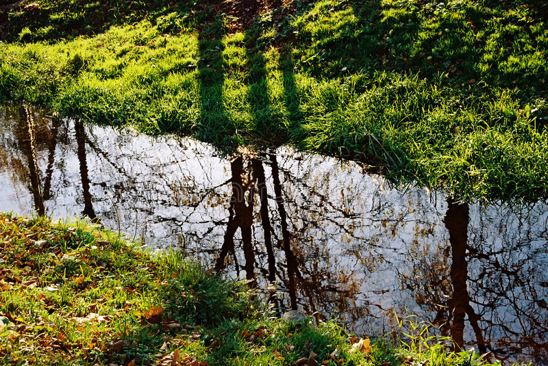 Reflections in a stream royalty free stock image