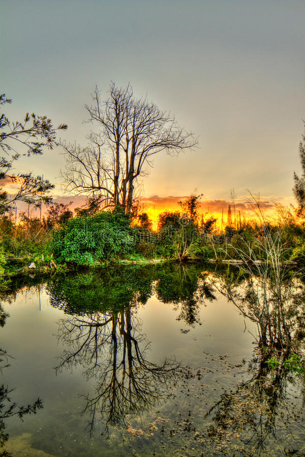 Everglades Sunset - National Park - Reflections at Sunset. A gorgeous sunset over a spring fed pond in Everglades National Park. Serenity in the reflection of stock photo