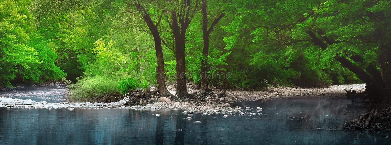 Reflections of tree trunks in a beautiful pond - Mount Olympus, Greece royalty free stock photos