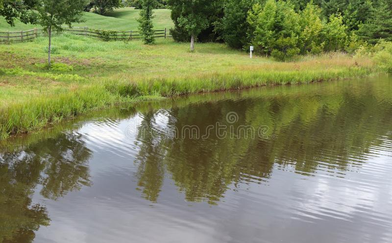 Reflections of Trees on a Pond Beautiful Landscape stock photo