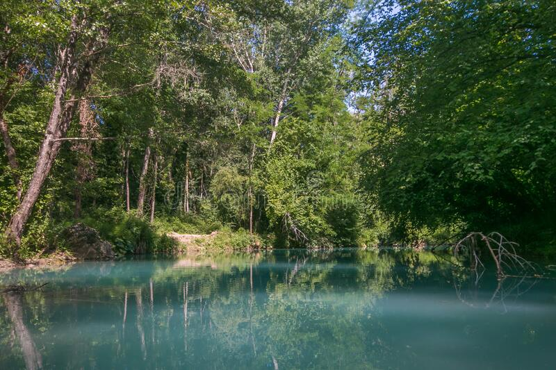 Reflections of the trees in the river Elsa in Tuscany royalty free stock photo