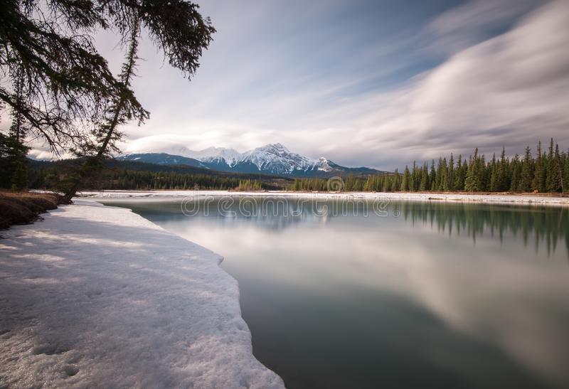 Reflections under the trees of the Athabasca River, Jasper. The Athabasca River flooding during the spring thaw in Jasper, Alberta stock photo