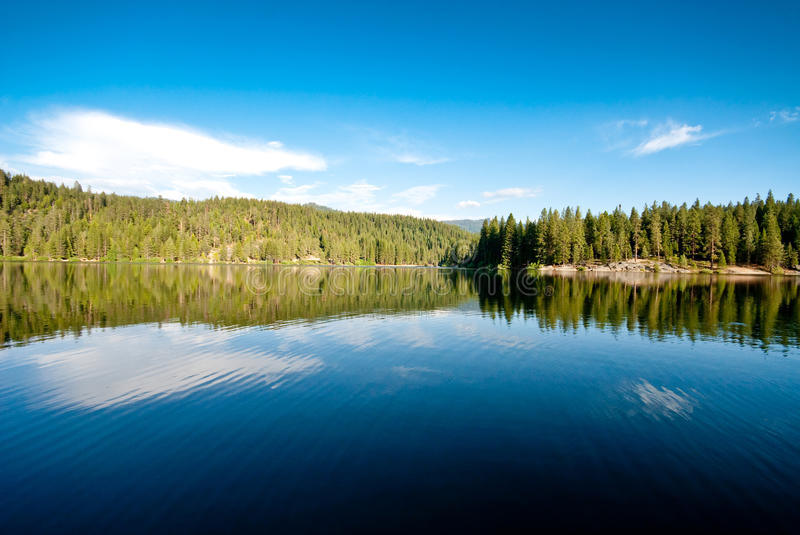 Reflective Beauty. Green Sequoia Trees and Their Reflection on Calm Lake stock images