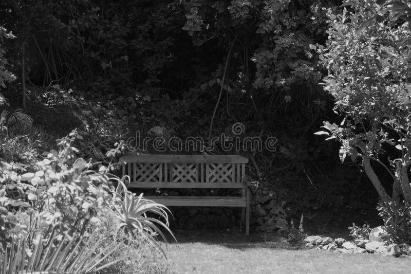 Reflective oasis royalty free stock photos