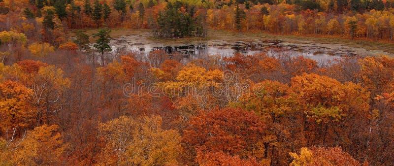 Reflective pond stock photography