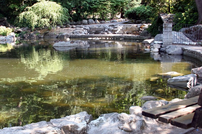 Reflective Pool. A small pond in an Oregon city park royalty free stock images