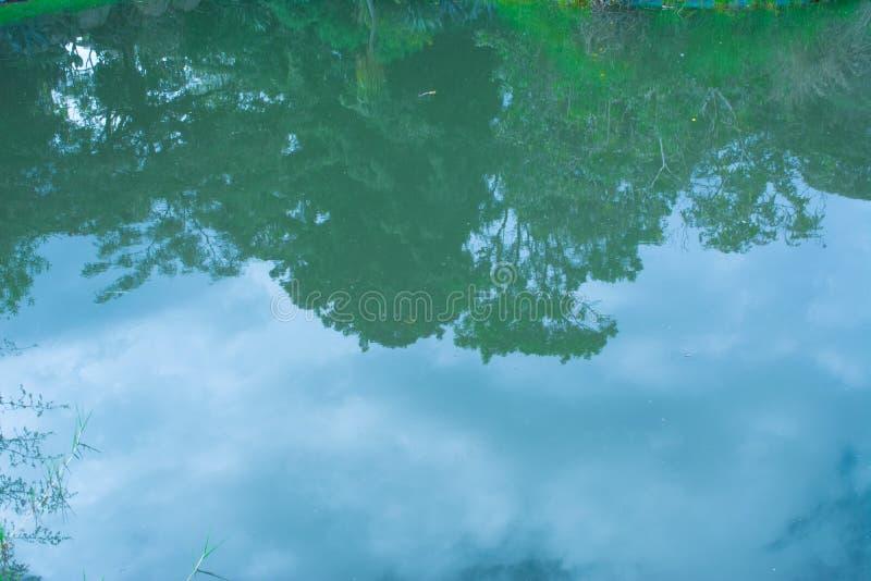 Refleje en el agua fotografía de archivo libre de regalías
