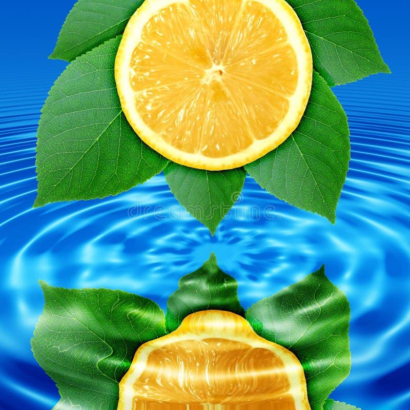 Refleje la limón-rebanada y la hoja en agua foto de archivo