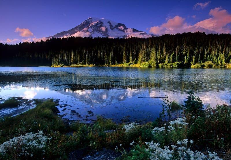 refleksja nad jeziorem