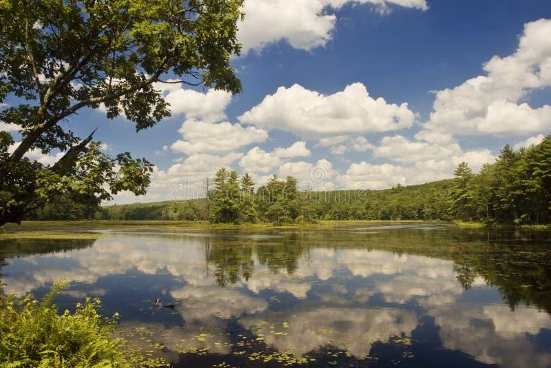 refleksje nad jeziorem niebo obraz royalty free