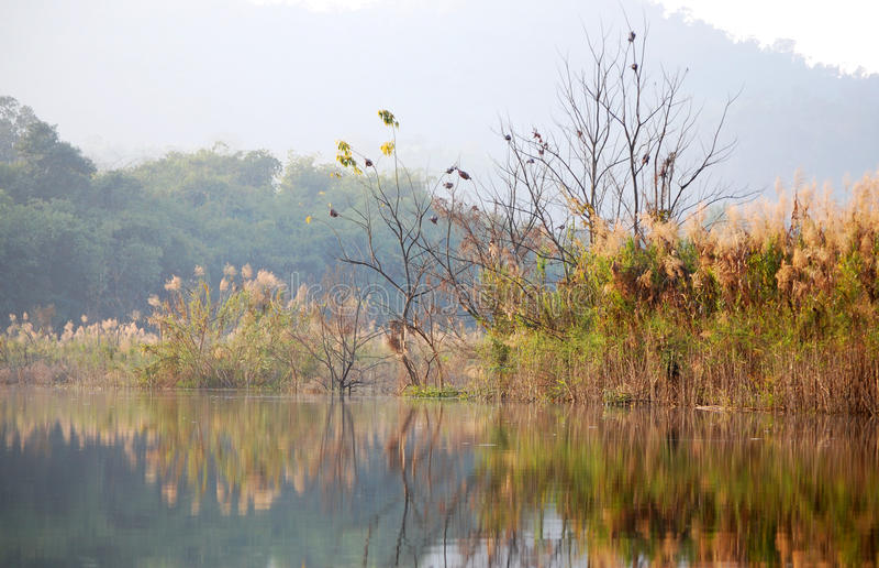 Download Reflektera landskapet fotografering för bildbyråer. Bild av spegel - 37349467