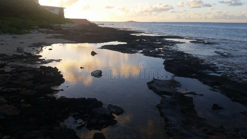 Reflektera solnedgången royaltyfria bilder