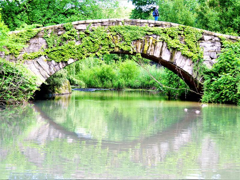 Reflekterande Ivy Covered Gapstow Bridge New York Central Park fotografering för bildbyråer