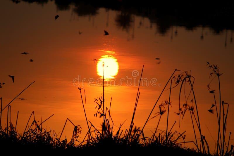 Reflekterande solnedgång royaltyfria foton