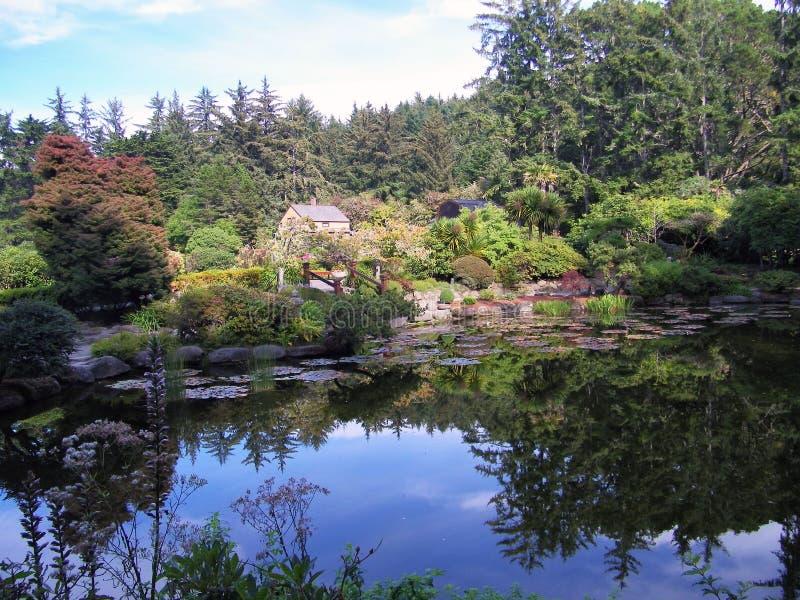 Reflekterande trädgårds- damm royaltyfri foto