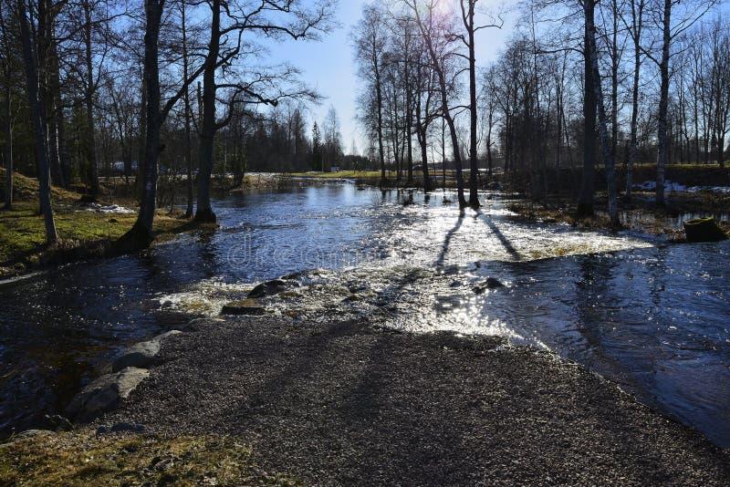 Reflektiert sich von der Sonne Fotos von wunderful Natur Swedens stockfoto