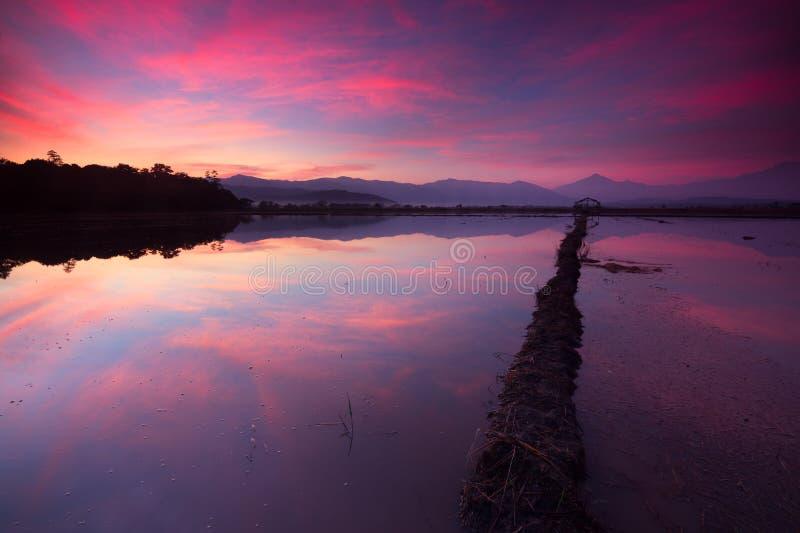 Reflektion av en vacker soluppgång i Kota Belud, Sabah royaltyfria foton