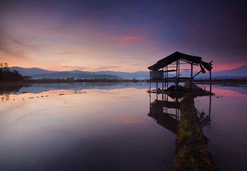 Reflektion av en vacker soluppgång i Kota Belud, Sabah royaltyfria bilder