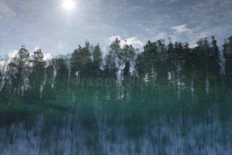 Refletido na água com ondinhas ajardine, floresta, céu fotos de stock