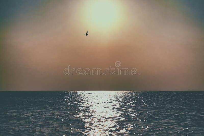 reflets solaires dans la mer images libres de droits