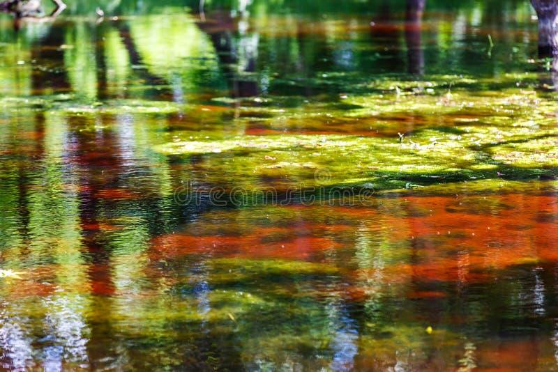 Reflexão abstrata colorida bonita da água foto de stock