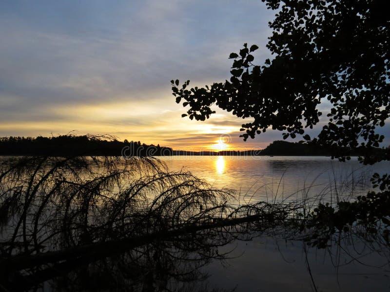 Reflexão caída da árvore na água durante o por do sol sobre o lago bonito com o céu nebuloso no fundo fotografia de stock royalty free