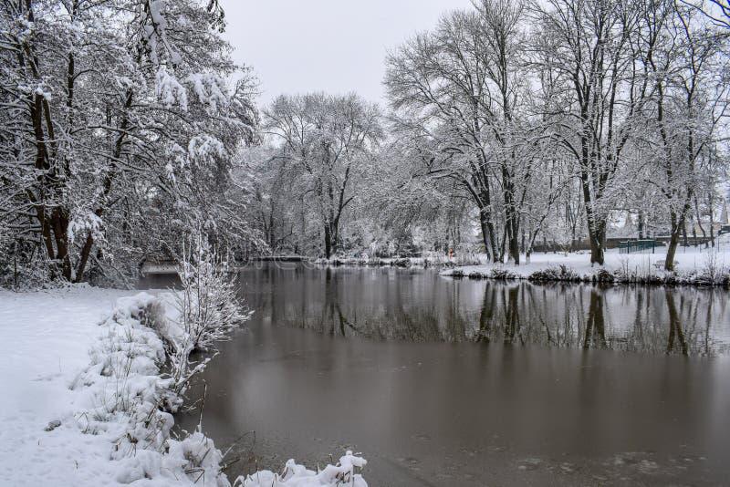 Reflexão congelada do lago no campo francês durante a estação/inverno do Natal foto de stock royalty free