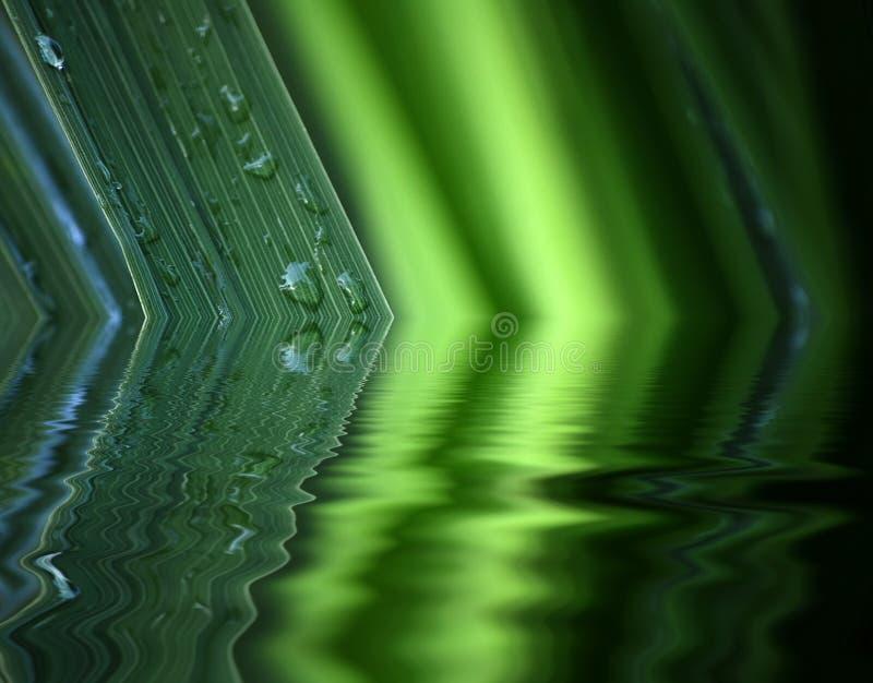 Reflexão da água da folha ilustração royalty free