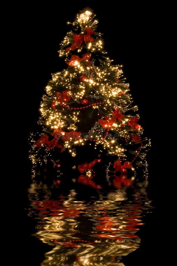 Reflexão da árvore de Natal imagens de stock royalty free