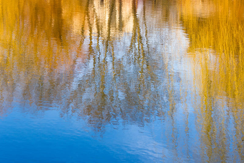 Reflexão da árvore do borrão da fotografia na água foto de stock