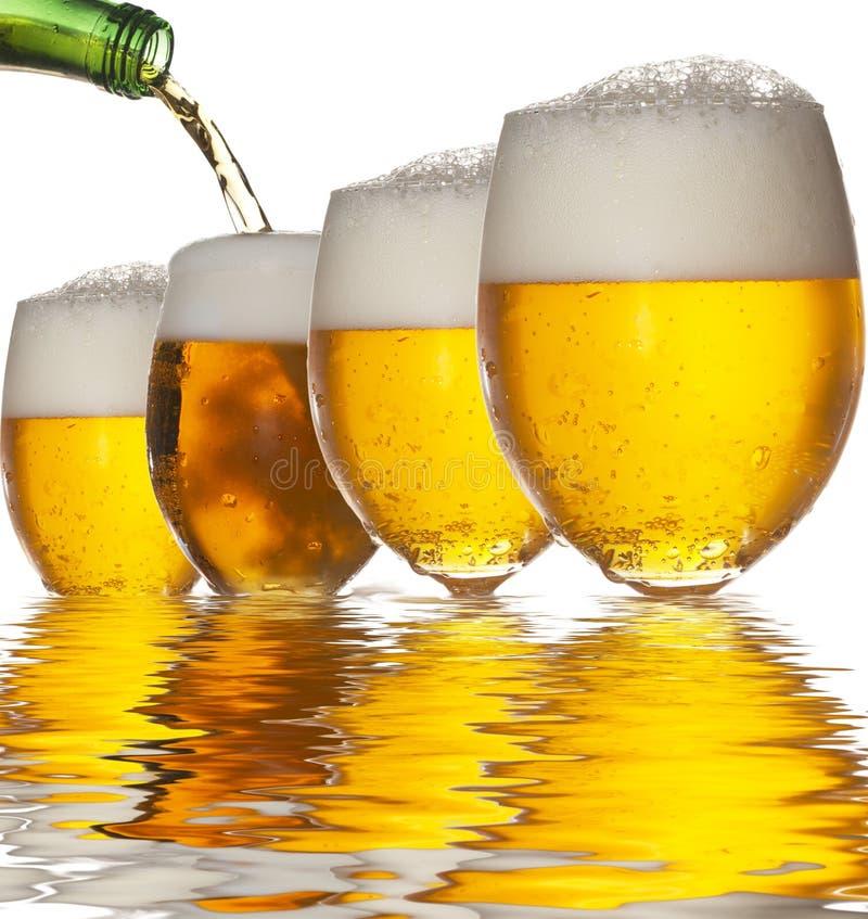 Reflexão da cerveja fotos de stock